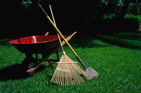Image result for spring yard work
