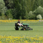R&D Lawn Care Landscaping Lawn Care Grove OK
