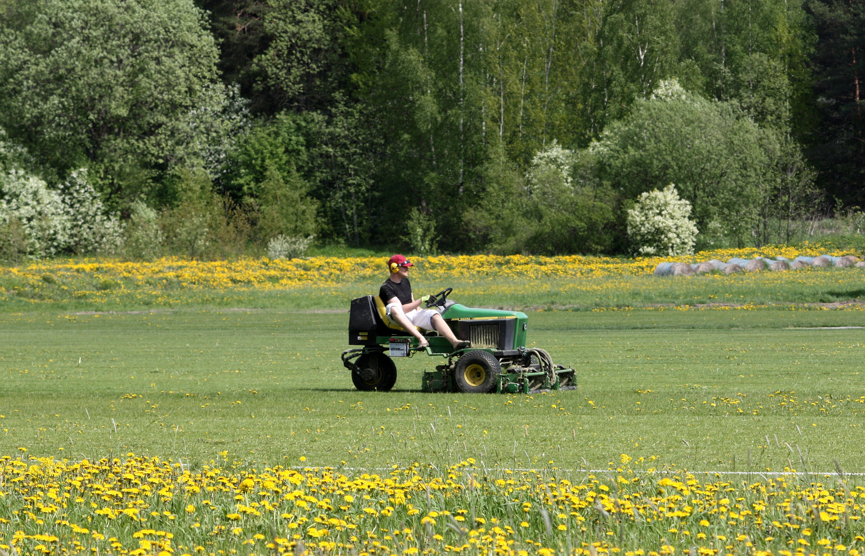 Lawn Care by the professionals at R&D Lawn Care