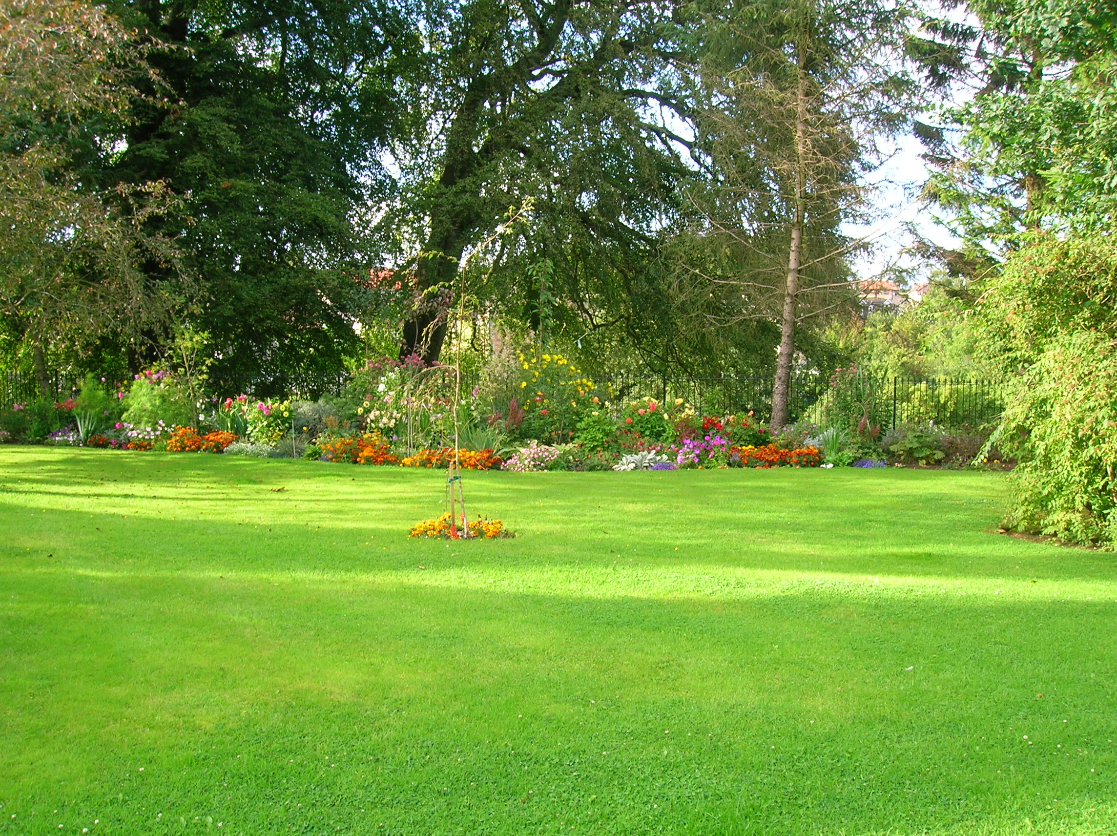 Lawn aeration by r d lawn care and landscaping for Best grass for landscaping