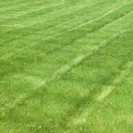 Lawn Aeration Joplin MO