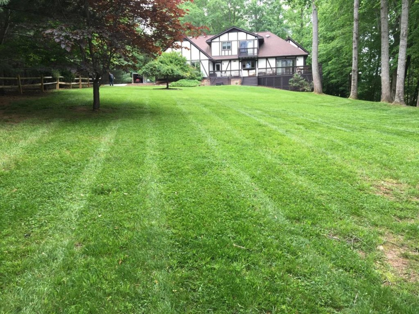r-and-d-residential-lawn-care